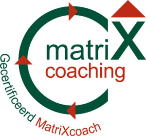 Afbeeldingsresultaat voor afbeelding matrix methode
